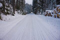 drogi leśną zimy zdjęcia stock