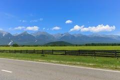 Drogi omijanie pięknym malowniczym miejscem blisko wysokich gór i zieleni łąk obraz royalty free