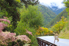 Drogi w górach Fotografia Stock