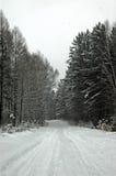 drogowa zima Obrazy Stock