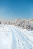 drogowa zima Fotografia Stock