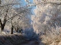 drogowa zima Fotografia Royalty Free