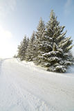 drogowa zima Zdjęcia Royalty Free