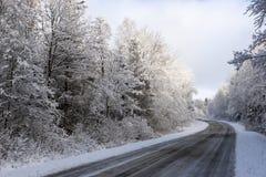 drogowa zima Zdjęcie Royalty Free