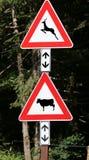 Drogowi znaki blisko drewnianego ostrożność zwierząt krowy skrzyżowania zdjęcia stock