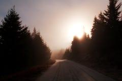 drogowy światło słoneczne Zdjęcia Royalty Free