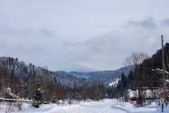 Drogowy iść stopa góra przez lasu Zdjęcia Royalty Free