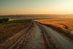 Drogowy pobliski żyta pole w wschód słońca fotografia royalty free