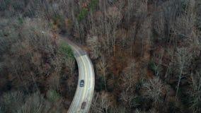 Drogowy punkt widzenia przez lasu zdjęcie stock