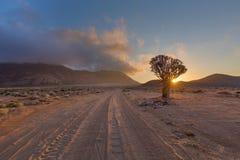 drogowy słońce Zdjęcie Stock