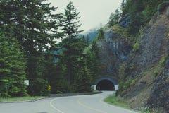 Drogowy tunel w Olimpijskim parku narodowym, stan washington obrazy stock