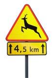 drogowy znak Fotografia Royalty Free