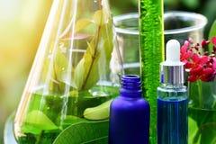 Drogue a pesquisa, a Botânica orgânica natural e produtos vidreiros científicos, medicina verde alternativa da erva, cuidados com fotos de stock royalty free