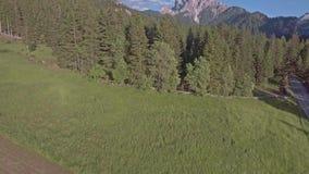 Drohnenluftfliegen über szenischen Gebirgswäldern und -feldern in den Dolomit-Alpen stock video footage