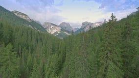 Drohnenluftfliegen über szenischen Gebirgswäldern und -feldern in den Dolomit-Alpen stock footage