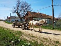 Drohobych Ukraina - April 14, 2018: Gamala mannen som passerar den retro trävagnen på grusvägen, den vita hästen, drar en vagn, b Fotografering för Bildbyråer