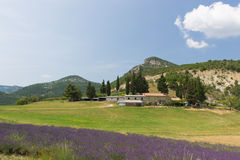 在法国Drome的风景 库存照片
