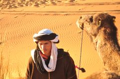 Dromedarios al Sahara, Marruecos Immagini Stock Libere da Diritti