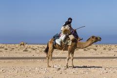 Dromedary shepherd. In Sahara desert, Morocco Stock Images