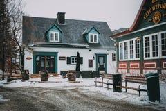 Dromenland in het midden van de winter Stock Fotografie