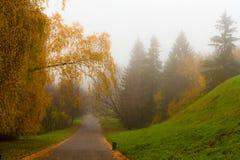 Dromerig de herfstpark Royalty-vrije Stock Fotografie
