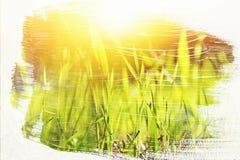 dromerig en abstract beeld van de weide met groen jong gras dubbel blootstellingseffect met de slagtextuur van de waterverfborste royalty-vrije stock fotografie