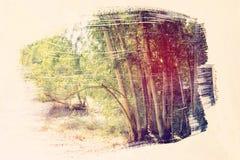 dromerig en abstract beeld van het bos dubbele blootstellingseffect met de slagtextuur van de waterverfborstel stock illustratie