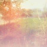 Dromerig en abstract landschap met lensgloed Retro Beeld van de Stijl Royalty-vrije Stock Fotografie