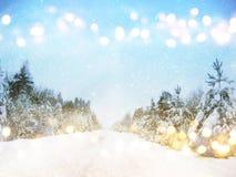 Dromerig en abstract magisch de winterlandschap Royalty-vrije Stock Afbeelding