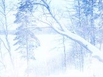 Dromerig en abstract magisch de winterlandschap Stock Fotografie