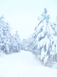 Dromerig en abstract magisch de winterlandschap Stock Foto