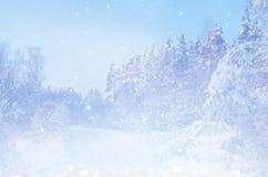 Dromerig en abstract magisch de winterlandschap Royalty-vrije Stock Foto's