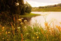 Dromerig landschap in Zweden. Textuur conceptueel beeld. Stock Afbeeldingen