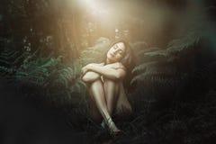 Dromerig licht over bosnimf stock foto