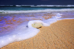 Dromerig Strand Prachtig Indonesië Stock Afbeeldingen