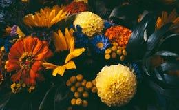 Dromerige magische de herfstbloemen Stock Afbeeldingen