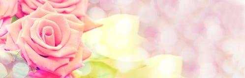 Dromerige pastelkleurrozen, panoramische bloemen uitstekende stijl als achtergrond stock foto