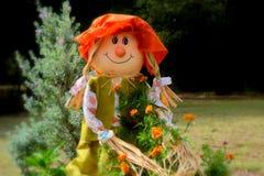 Dromerige Sally Scarecrow royalty-vrije stock afbeelding