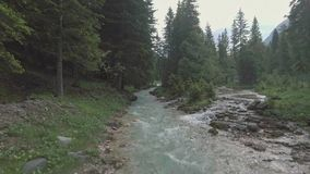 Drone aerial flying over a wild mountain river in Dolomites Alps. Drone aerial flying over a wild mountain river in Dolomites, Italy Alps stock video