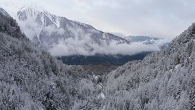 Drone aerial footage of snowy mountains and trees, stock video stock video footage