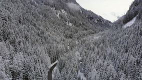 Drone aerial footage of snowy mountains and trees, stock video stock video
