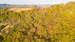 Drone aerial view of woods during the autumn season with warm colors. Drone aerial view of woods during the autumn season with warm colours Stock Photography