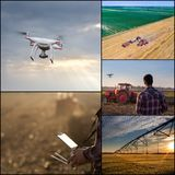 Drone in agricultural production collage. Collage of agricultural images of farmland shoot from drone. Technology innovation increasing farming productivity stock photos