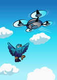 Drone approach to the bird. Drone flying in the sky and approaching to the bird to surprise him Stock Photos