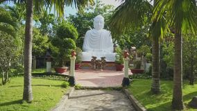 Drone Approaches to White Buddha Statue among Tropical Plants stock footage