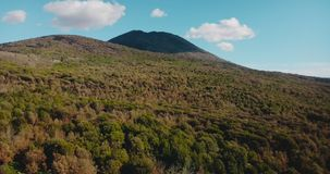 Drone ascending above Vesuvius volcano, Italy. Aerial view panorama of amazing summer mountain forest and clear sky. 4K. stock video