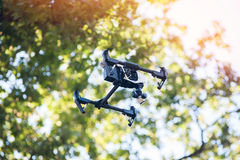 Drone flies in forest stock photos