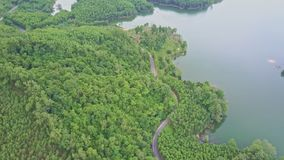 Drone Flies above Tropical Woods and Road by Lake stock video footage