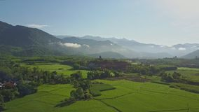 Drone Flies across Rice Fields to Hills at Sunrise. Drone flies across immense rice fields and trees to distant hills in pictorial highlands against sunrise blue stock footage