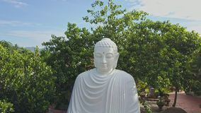 Drone Flies Close to Buddha Statue among Tropical Plants. Drone flies close to large Buddha statue located on ancient pagoda territory among tropical plants stock video